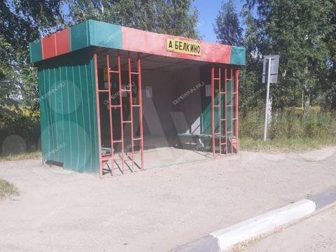 selo-ostankino-gorodskoy-okrug-bor фото