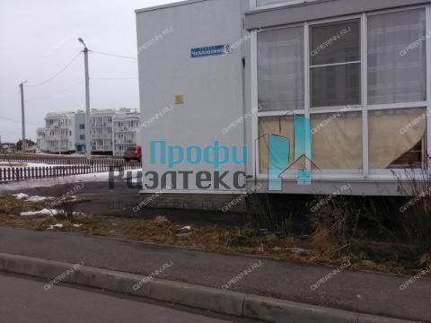 1-komnatnaya-poselok-novinki-pr-chkalovskiy-d-8 фото