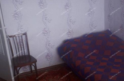 1-komnatnaya-derevnya-konevo-balahninskiy-rayon фото