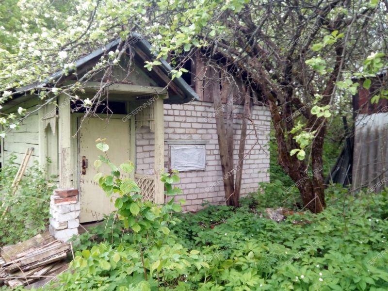 сад на СНТ 40 лет победы