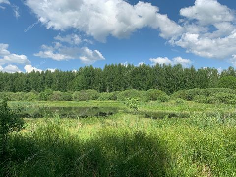 selo-selskaya-maza-lyskovskiy-municipalnyy-okrug фото