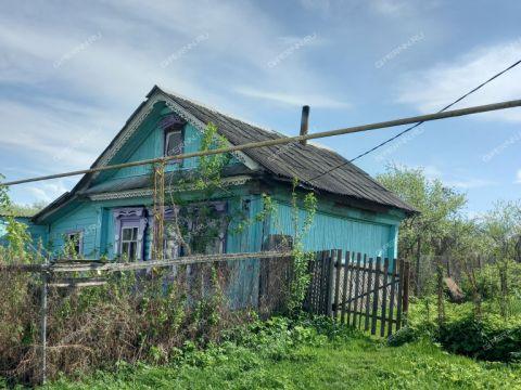 derevnya-hvatkovo-bogorodskiy-rayon фото