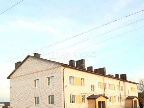 2-komnatnaya-selo-yazykovo-shatkovskiy-rayon фото